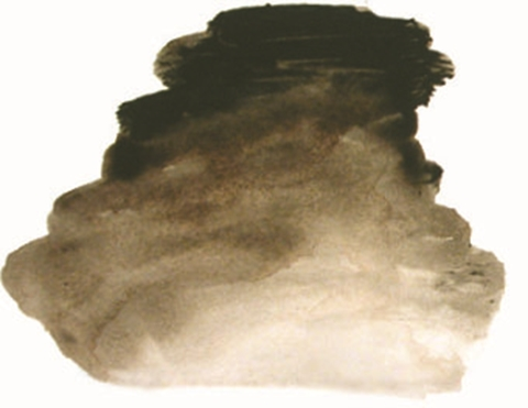 Picture of AI Raw Umber S1 500ml